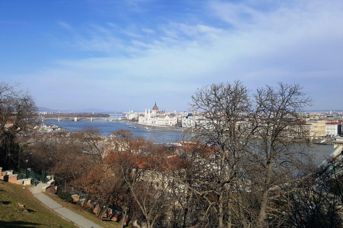 Поездка в Будапешт.