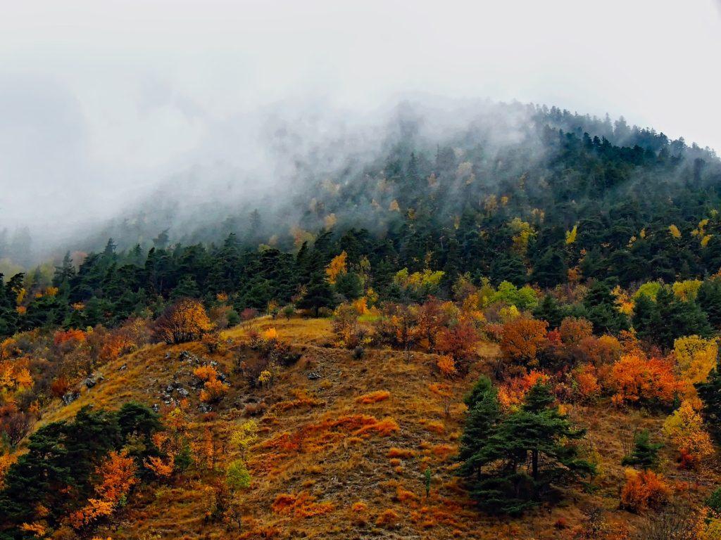 Трансильвания. Загадочный туман