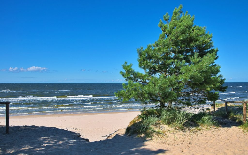 Пляж и море в Янтарном